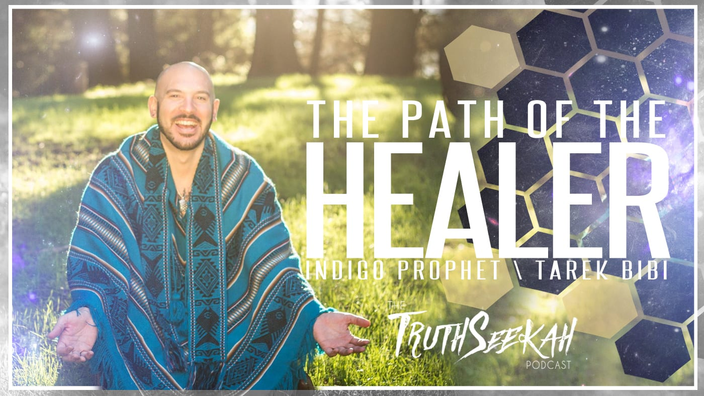 The Path of the Healer | Indigo Prophet / Tarek Bibi