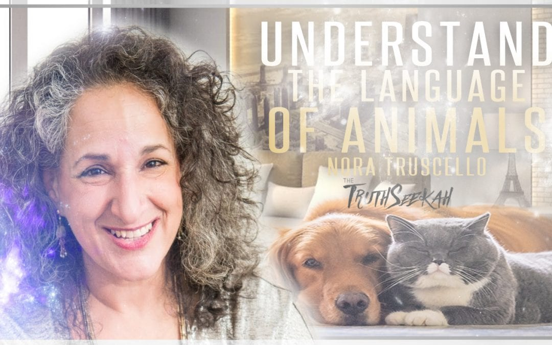 Understand The Intuitive Language of Animals   Nora Truscello