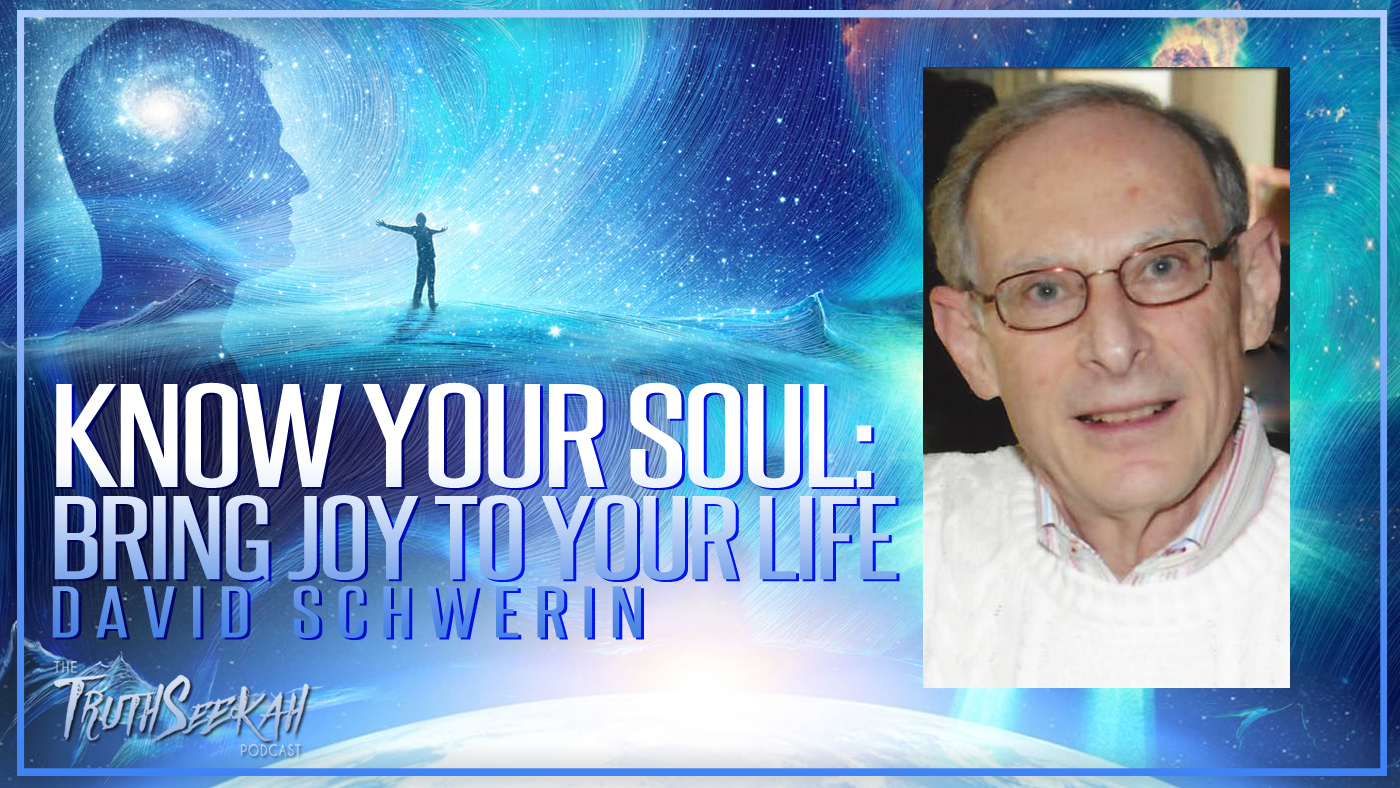 Know Your Soul: Bring Joy To Your Life | David A. Schwerin | TruthSeekah Podcast